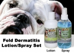 Canine 8 oz Antimicrobial Spray & 8 oz Antiseptic Lotion Set for Fold Dermatitis